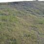 Geocomposito antierosivo