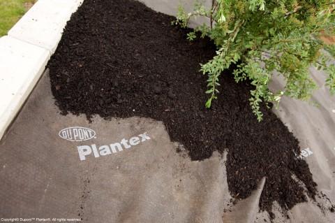 Dupont Plantex Gold
