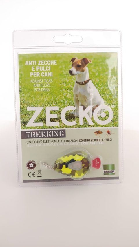 Zecko Dog